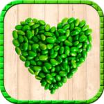 logo app healthy food
