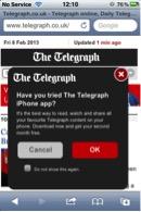 screenshot from online newspaper