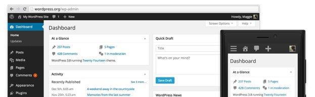 wordpress - web app development