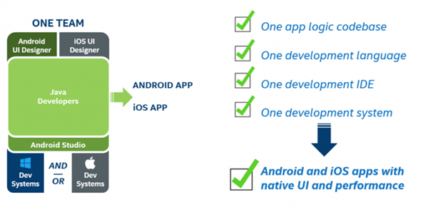 cross-platform mobile development environment