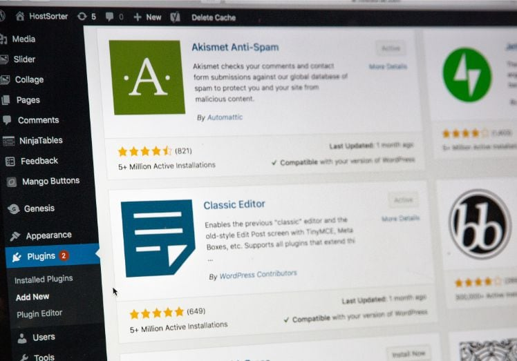 Screenshot of plugins on WordPress website