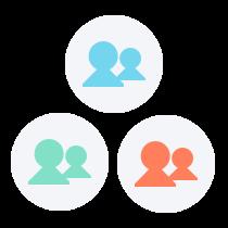 three expert teams